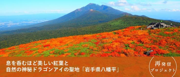 スタッフブログ八幡平